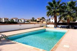 Бассейн. Кипр, Ионион - Айя Текла : Прекрасная вилла с беспрепятственным видом на Средиземное море, с 3-мя спальнями, с бассейном, солнечной террасой и каменным барбекю, расположена в 50 метрах от пляжа Ayia Thekla Beach