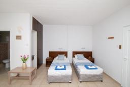 Студия (гостиная+кухня). Кипр, Санрайз Протарас : Комфортабельная студия с уютным балконом, расположена в самом центре Протараса в 350м от песчаного пляжа Sunrise Beach