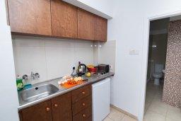 Кухня. Кипр, Санрайз Протарас : Уютный апартамент с гостиной, отдельной спальней и балконом, расположен в самом центре Протараса в 350м от песчаного пляжа Sunrise Beach