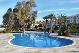 Территория. Кипр, Пафос город : Потрясающий апартамент с балконом с видом на Средиземное море с 2-мя спальнями, с 2-мя ванными комнатами, расположен в комплексе с бассейном всего в 400 метрах от моря