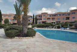 Территория. Кипр, Пафос город : Комфортабельная вилла с 2-мя спальнями, с солнечной террасой с патио, расположена в комплексе с бассейном всего в 500 метрах от моря