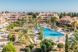 Территория. Кипр, Пафос город : Прекрасный апартамент с отдельной спальней, уютным балконом с патио, расположен в комплексе с бассейном всего в 400 метрах от моря