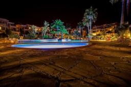Бассейн. Кипр, Пафос город : Прекрасный апартамент с отдельной спальней, уютным балконом с патио, расположен в комплексе с бассейном всего в 400 метрах от моря