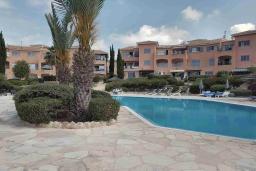 Территория. Кипр, Пафос город : Очаровательная вилла с 2-мя спальнями, с солнечной террасой с патио, расположена в комплексе с бассейном всего в 500 метрах от моря