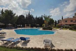 Бассейн. Кипр, Пафос город : Очаровательная вилла с 2-мя спальнями, с солнечной террасой с патио, расположена в комплексе с бассейном всего в 500 метрах от моря