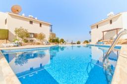 Бассейн. Кипр, Хлорака : Уютный таунхаус с видом на Средиземное море, c 2-мя спальнями, расположен в современном комплексе с бассейном