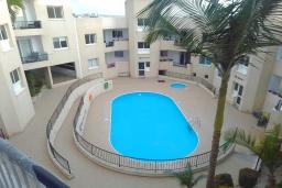 Территория. Кипр, Пейя : Уютный апартамент c 2-мя спальнями и балконом, расположен в комплексе с бассейном