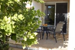 Терраса. Кипр, Корал Бэй : Прекрасная вилла с 3-мя спальнями, с бассейном, в окружении зелёного сада, тенистой террасой с патио и барбекю, расположена недалеко от пляжей Coral Bay и Coralia Beach