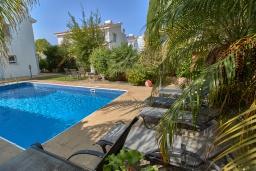 Бассейн. Кипр, Корал Бэй : Очаровательная вилла с видом на Средиземное море, с 3-мя спальнями, с бассейном, в окружении пышного зелёного сада, тенистой террасой с патио, расположена недалеко от пляжа Coralia Bay Beach