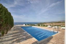 Бассейн. Кипр, Пейя : Современная вилла с панорамным видом на Средиземное море, с 4-мя спальнями, с бассейном с шезлонгами, солнечной террасой с патио и каменным барбекю, расположена недалеко от пляжа White River Beach