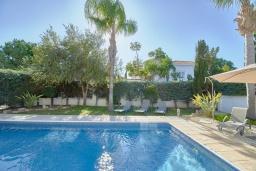 Бассейн. Кипр, Корал Бэй : Очаровательная вилла с 3-мя спальнями, с бассейном, в окружении пышного зелёного сада, с солнечной террасой с патио и барбекю, расположена недалеко от пляжа Coralia Bay Beach
