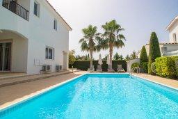 Бассейн. Кипр, Корал Бэй : Прекрасная вилла с 3-мя спальнями, с бассейном, в окружении зелёного сада, с тенистой террасой с патио и барбекю, расположена недалеко от пляжа Coralia Bay Beach