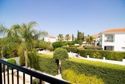 Зелёный сад. Кипр, Корал Бэй : Прекрасная вилла с 3-мя спальнями, с бассейном, в окружении зелёного сада, с тенистой террасой с патио и барбекю, расположена недалеко от пляжа Coralia Bay Beach
