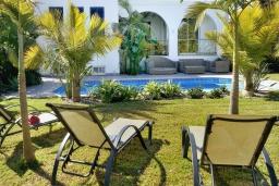 Зона отдыха у бассейна. Кипр, Лачи : Потрясающая вилла с панорамным видом на Средиземное море, с 3-мя спальнями, с бассейном в окружении зелёного сада, тенистой террасой с патио, lounge-зоной и барбекю, расположена всего в 50 метрах от пляжа Latsi Beach