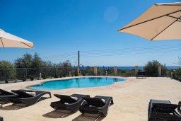 Бассейн. Кипр, Корал Бэй : Потрясающая вилла с видом на Средиземное море, с 3-мя спальнями, с бассейном в окружении зелёного сада, тенистой террасой с патио и барбекю, расположена недалеко от пляжа Coral Bay Beach