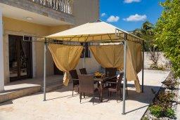Территория. Кипр, Корал Бэй : Потрясающая вилла с видом на Средиземное море, с 3-мя спальнями, с бассейном в окружении зелёного сада, тенистой террасой с патио и барбекю, расположена недалеко от пляжа Coral Bay Beach