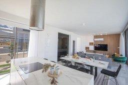 Кухня. Кипр, Санрайз Протарас : Современная вилла с 3-мя спальнями, с бассейном, солнечной террасой с патио, lounge-зоной и барбекю, расположена недалеко от пляжа Sunrise Beach