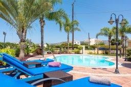 Бассейн. Кипр, Корал Бэй : Потрясающая вилла с 3-мя спальнями, с бассейном, тенистой террасой с патио и каменным барбекю, расположена недалеко от пляжей Corallia Beach и Coral Bay Beach