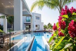 Вид на виллу/дом снаружи. Кипр, Аргака : Волшебная вилла с панорамным видом на море и горы, с 3-мя спальнями, с бассейном с подогревом, беседкой, настольным теннисом и бильярдом, в окружении пышного зелёного сада, расположена в тихом и спокойном районе у подножия деревни Аргака