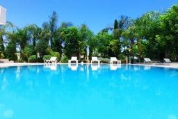 Бассейн. Кипр, Коннос Бэй : Роскошная вилла с 4-мя спальнями, с бассейном, джакузи, солнечной террасой с lounge-зоной, дровяной кипрской печью, в окружении пышного зелёного сада, с тренажерным залом и сауной, расположена в 500 метрах от пляжа Konnos Bay Beach