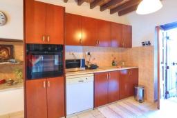 Кухня. Кипр, Друсхия : Каменный дом с 3-мя спальнями, солнечной террасой с патио и барбекю, в окружении зелёного сада, расположен на окраине традиционной деревни Droushia