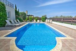 Бассейн. Кипр, Полис город : Великолепная вилла в окружении зелёного сада, с 3-мя спальнями, с бассейном, тенистой террасой с патио и каменным барбекю, расположена