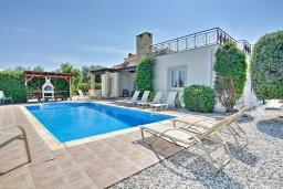 Вид на виллу/дом снаружи. Кипр, Полис город : Великолепная вилла в окружении зелёного сада, с 3-мя спальнями, с бассейном, тенистой террасой с патио и каменным барбекю, расположена