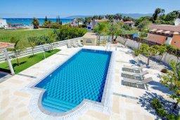 Бассейн. Кипр, Лачи : Превосходная вилла с террасой на крыше с видом на Средиземное море, с 3-мя спальнями, с бассейном, беседкой с уличным баром и каменным барбекю, расположена в 200 метрах от пляжа Souli Beach