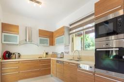 Кухня. Кипр, Лачи : Роскошная вилла с террасой на крыше с lounge-зоной и потрясающим видом на Средиземное море, с 3-мя спальнями, с бассейном,  расположена в 150 метрах от пляжа Souli Beach