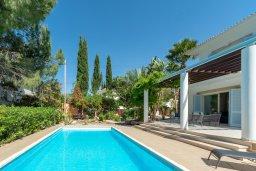Бассейн. Кипр, Лачи : Шикарная вилла в окружении пышного зелёного сада, с 3-мя спальнями, с бассейном, тенистой террасой с патио и традиционным кипрским барбекю, расположена в 200 метрах от пляжа Yiannakis Beach