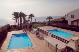 Бассейн. Кипр, Перволия : Вилла на берегу моря с панорамным видом и частным выходом на пляж, с 4-мя спальнями, с бассейном, солнечной террасой с патио и каменным барбекю