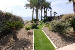 Территория. Кипр, Перволия : Вилла на берегу моря с панорамным видом и частным выходом на пляж, с 4-мя спальнями, с бассейном, солнечной террасой с патио и каменным барбекю