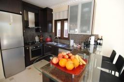 Кухня. Кипр, Декелия - Ороклини : Вилла с видом на Средиземное море, с 2-мя спальнями, с тенистой  террасой с патио и барбекю, в окружении пышного зелёного сада, расположена в Dhekelia около пляжа Palm Beach