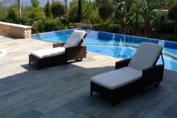 Бассейн. Кипр, Лачи : Вилла с прямым выходом к морю, с 4-мя спальнями, 4-мя ванными комнатами, с бассейном, хамамом, солнечной террасой с барбекю, расположена в самом живописном месте в деревушке Latchi
