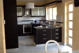 Кухня. Кипр, Лачи : Вилла с прямым выходом к морю, с 4-мя спальнями, 4-мя ванными комнатами, с бассейном, хамамом, солнечной террасой с барбекю, расположена в самом живописном месте в деревушке Latchi