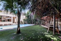 Зелёный сад. Кипр, Св. Рафаэль Лимассол : Вилла в окружении пышного зелёного сада, с 3-мя спальнями, с бассейном, тенистой террасой с патио и барбекю