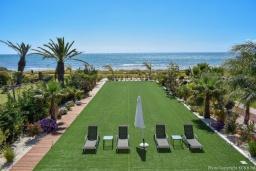 Зелёный сад. Кипр, Ионион - Айя Текла : Вилла на берегу моря с просторным зелёным садом, с 3-мя спальнями, с бассейном, тенистой террасой с патио и барбекю