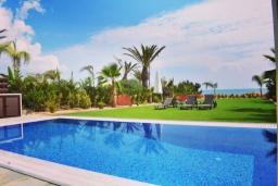 Территория. Кипр, Ионион - Айя Текла : Вилла на берегу моря с просторным зелёным садом, с 3-мя спальнями, с бассейном, тенистой террасой с патио и барбекю