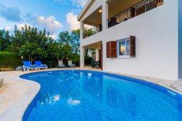Бассейн. Кипр, Нео Хорио : Вилла с видом на залив Chryshochou, с 3-мя спальнями, с бассейном, тенистой террасой с патио, расположена в причудливой деревушке Neo Chorion