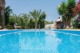 Бассейн. Кипр, Нео Хорио : Вилла с видом на море, с 3-мя спальнями, с бассейном, тенистой террасой с патио и традиционным каменным барбекю, расположена недалеко от пляжа Neo Chorio 2 Beach