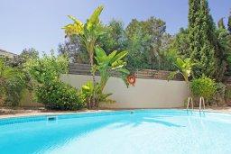 Бассейн. Кипр, Коннос Бэй : Потрясающая вилла с видом на мыс Cape Greco, с 3-мя спальнями, с большим бассейном, потрясающим садом с пальмами, цветами и прекрасным видом на море