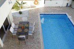Бассейн. Кипр, Фиг Три Бэй Протарас : Новая двухэтажная вилла с 3-мя спальнями,  с большим бассейном и террасой, в окружении деревьев и растений