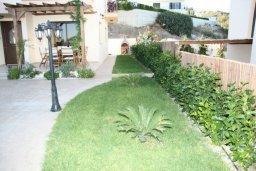 Зелёный сад. Кипр, Писсури : Очаровательная вилла с 3-мя спальнями для 6-ти человек с бассейном, окруженная ухоженным зеленым садом