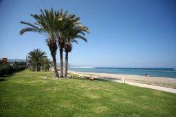 Пляж Latchi Beach в Лачи