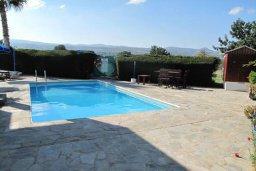 Бассейн. Кипр, Полис город : Вилла с 2-мя спальнями, с бассейном, зелёной территорией, с патио и барбекю, расположена в Лачи