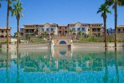 Бассейн. Кипр, Св. Рафаэль Лимассол : Двухуровневый апартамент в 50 метрах от пляжа, в комплексе с большим бассейном, с просторной гостиной, тремя отдельными спальнями и четырьмя ванными комнатами