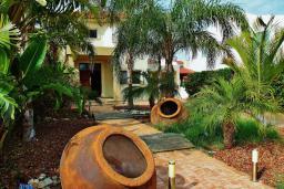 Территория. Кипр, Перволия : Великолепная вилла с видом на море, с 4-мя спальнями, с бассейном, красивым зелёным садом и тенистой террасой с патио