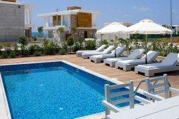 Бассейн. Кипр, Пафос город : Потрясающая вилла с 3-мя спальнями, с бассейном и солнечной террасой, расположена в Пафосе