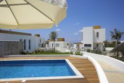 Бассейн. Кипр, Пафос город : Уютная вилла с бассейном, барбекю и солнечной террасой, расположена в Пафосе