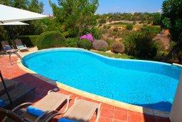 Бассейн. Кипр, Афродита Хиллз : Вилла с 3-мя спальнями, с бассейном и приватным двориком, расположена в Афродита Хиллз